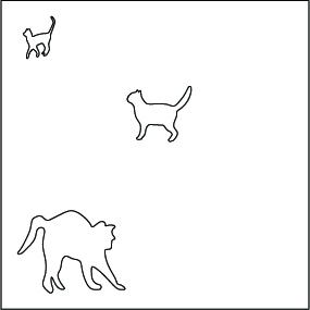 CAT1_foregroundmiddleback